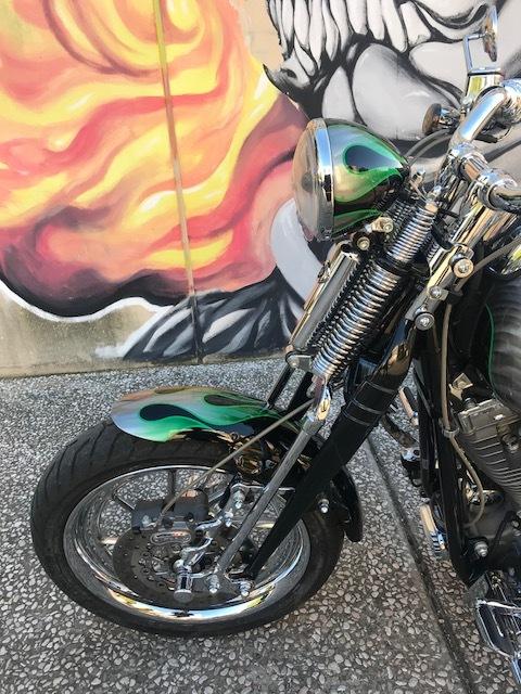 Harley-Davidson Ravenna CVO SOFTAIL SPRINGER